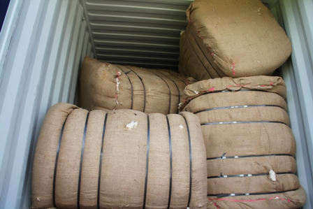 Cotton lint packed and ready for export