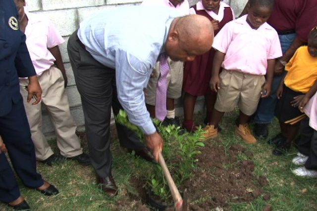 Deputy Premier and Area Representative for the St. John's Parish the Honourable Hensley Daniel engages in a tree planting exercise with students of the Elizabeth Pemberton Primary School