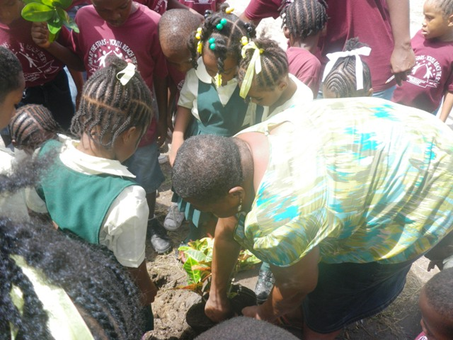 Brown Hill village resident assists students of the Ivor Walters Primary School with their beautification initiative