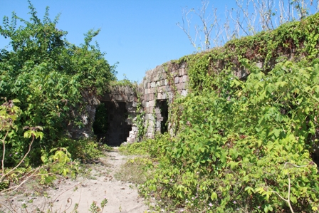 A section of the New River Estate Heritage Site overgrown by vegetation as a means of protection to deter would be thieves from stealing more stones from ruins
