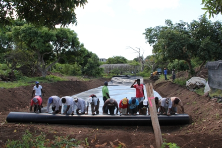 Workers at the Department of Agriculture roll out the lining in the pond for the pilot Aquaculture project for tilapia farming at the Prospect farm