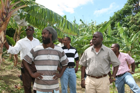 Minister of Agriculture, Fisheries and Cooperatives in the Nevis Island Administration Hon. Robelto Hector keeping in touch with a local farmer on one of his regular field trips to meet with farmers throughout Nevis