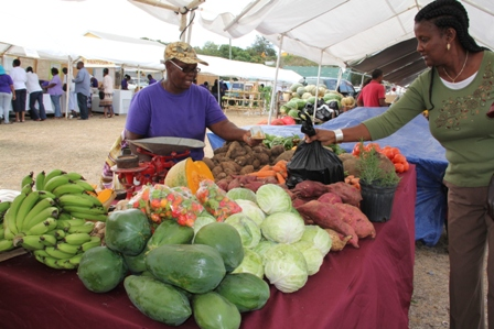 Farmers selling their products during the 19th annual Department of Agriculture Open Day at the Villa Grounds in Charlestown