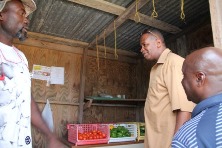 Acting Permanent Secretary in the Ministry of Agriculture Mr. Eric Evelyn (middle) and Minister of Agriculture in the Nevis Island Administration Hon. Alexis Jeffers (right) visit the onsite shop of Farmer Ellis Philip after a tour of his farm at Potworks