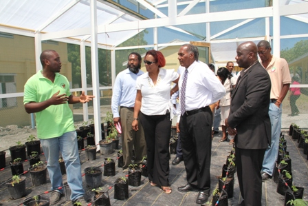 (Extreme left) Agriculture Supervisor in the Department of Agriculture Mr. Randy Elliott explains the workings of the green house to Premier of Nevis (second from right, Minister of Agriculture (extreme right), Representatives of the Inter-American Institute for Cooperation on Agriculture (IICA), Education officials and staff of the Charlestown Secondary School moments after the facility was officially handed over by IICA