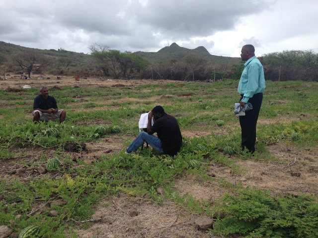 Executive Producer of Agriculture in Style and Permanent Secretary in the Ministry of Agriculture Eric Evelyn (standing) Kerry Williams of the Department of Information filming an episode with a farmer on a watermelon farm in Nevis