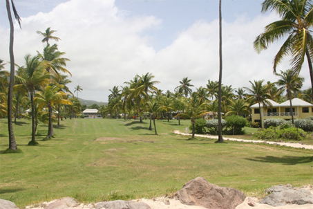 Nisbet Plantation Beach Club's Coconut Walk from the beach with the Great House in the distance (file photo)