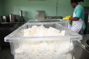 Cassava meal in process at the Nevis Agro Processing Centre