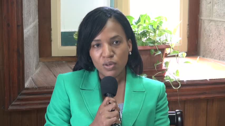 Permanent Secretary in the Ministry of Health Nicole Slack-Liburd