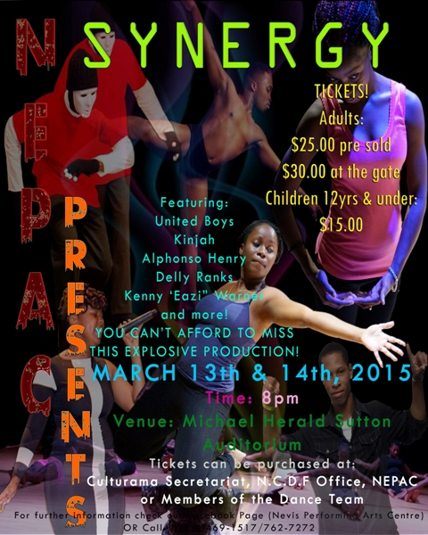 NEPAC presents its First Dance Production - SYNERY