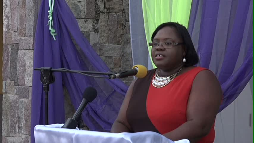 Junior Minister of Social Development on Nevis Mrs. Brandy-Williams delivering remarks at the Women of Excellence Awards Ceremony and Cocktail on March 29, 2015 at the Nevis Performing Arts Centre's courtyard