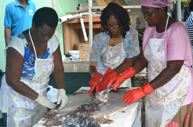 Participants learning the dying tradition of tanning animal skins at a Tanning Workshop hosted by the Small Business Enterprise Unit on Nevis at the grounds of the Department of Agriculture in Prospect on March 04, 2016