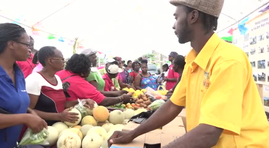 Patrons buying fruits, root crops and vegetables at the New River Farmers Co-operative Society's 1st New River Day on May 20, at New River