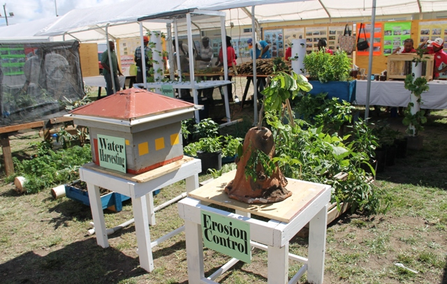An exhibit at the 2016 Agriculture Open Day at the Villa Grounds in Charlestown (file photo)
