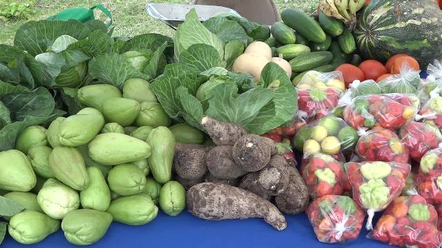 Root crops and vegetables for sale at the New River Farmers Cooperative Open Day at New River on May 19, 2017