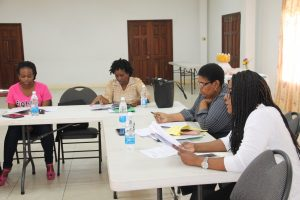 Mrs. Janette Nisbett-Meloney, Director of the Department of Community Development; Ms. Joyce Moven, Deputy Director of the Department of Social Services; USAID Facilitator at the workshop regarding the CFYR programme survey, held at the St. Paul's Anglican Church Hall on February 01, 2018