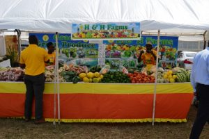 A variety of farm produce from H&H Farms in Gingerland's booth at the at the Department of Agriculture's 24th Annual Open Day at the Villa Grounds in Charlestown