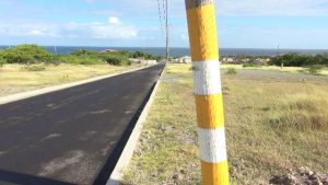 Some of the painted electricity poles on the eastern side of the newly reconstructed Shaws Road in Newcastle as part of the Shaws Road Improvement Project