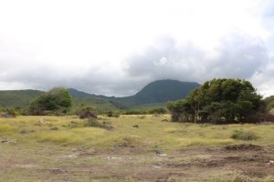 Another section of University Heights which is earmarked for the Nevis Island Administration's housing development project through the Nevis Housing and Land Development Corporation for returning university graduates