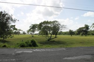 The area at Pinney's Beach earmarked for the proposed Pinney's Recreational Park on Nevis