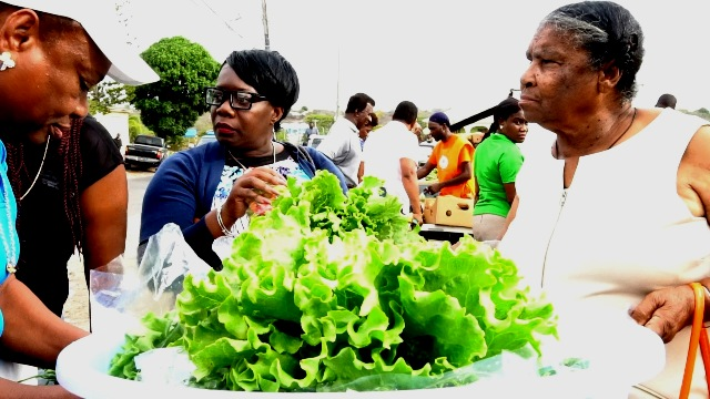 Some patrons purchasing fresh produce at a previous Farmers Market at the top of Government Road organised by the Department of Agriculture on Nevis