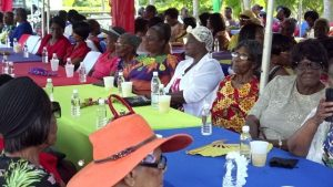 "A section of the seniors of Nevis attending the ""Afternoon of the lawn"" on the grounds of Government house at Bath Plain on October 31, 2019 hosted by the Department Department of Social Services, Senior Citizens Division"