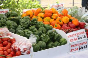 Tomatoes and sweet peppers grown on Nevis (file photo)