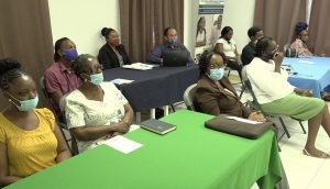 A section of the participants attending the opening ceremony of the Small Business Boot Camp hosted by the Ministry of Health and Gender Affairs in the Nevis Island Administration at the GMBC Building in Charlestown on October 19, 2020