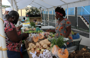 Local fruits and vegetables on sale at World Food Day activities at the Cultural Village in Charlestown on October 17, 2020