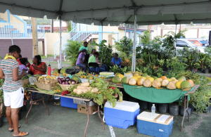 A horticultural display at World Food Day activities at the Cultural Village in Charlestown on October 17, 2020