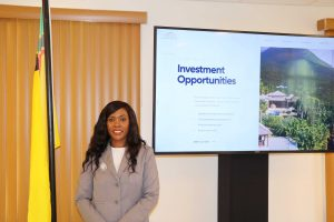 Ms. Kimone Moving, Director of the Nevis Investment Promotion Agency at the ceremony launching the agency's new website on February 02, 2021, in the Cabinet Room at Pinney's Estate