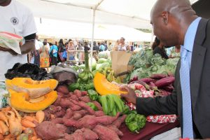 Hon. Alexis Jeffers, Minister of Agriculture in the Nevis Island Administration gets a closer look at local produce at a farmer's booth at Agriculture Open Day (file photo)