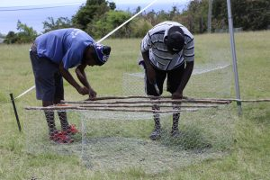 Participants building a fish trap at the Department of Gender Affairs' Fish Trap Making Workshop for boys and young men at the Jessups Playing Field on May 08, 2021